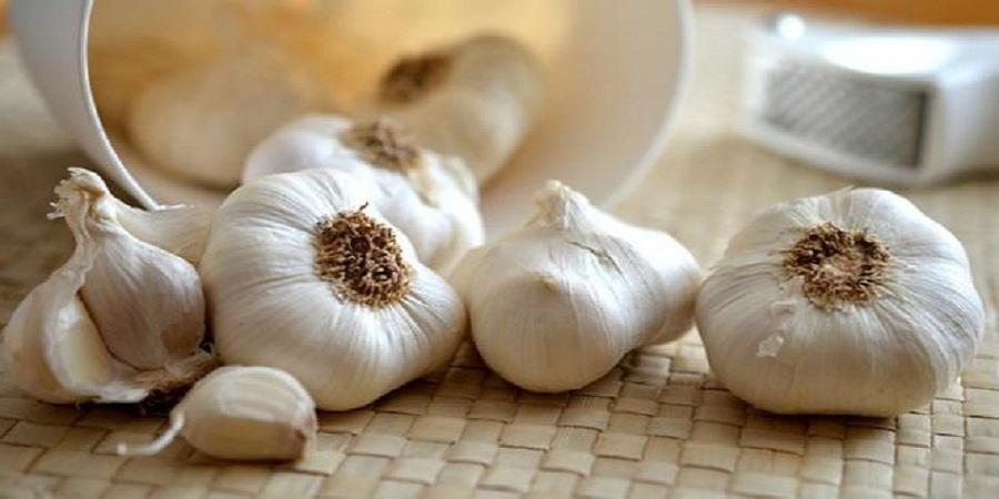 5 Makanan yang Bisa Meningkatkan Sistem Imun Tubuh