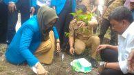 Rektor UIM Bersama Mahasiswa KKN Tanam 1500 Pohon
