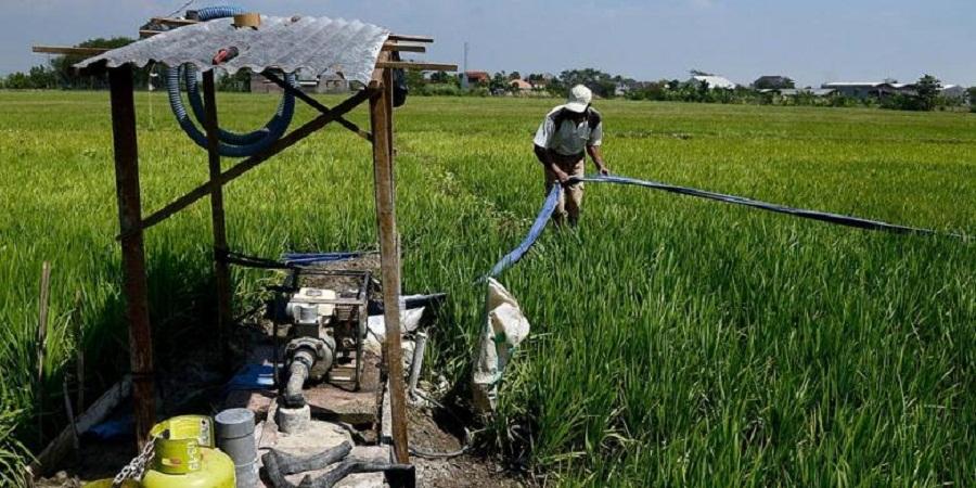 Atasi Permasalahan Pengairan Sawah Wagub Minta Dibuatkan Sumur Bor Di Lahan Persawahan
