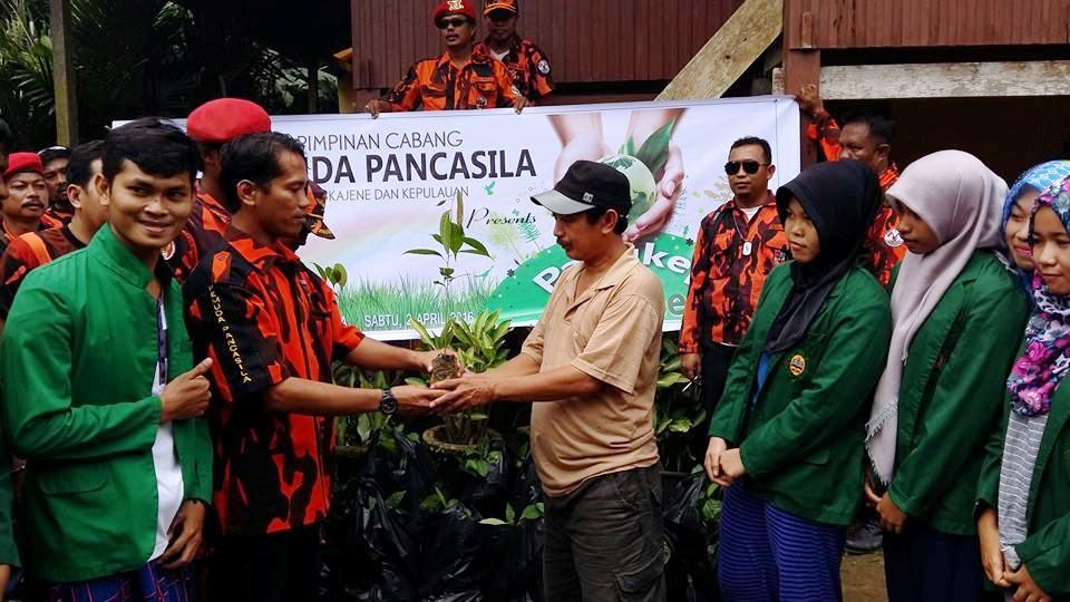 Perduli Lingkungan Pemuda Pancasila Pangkep Tanam 1000 Pohon
