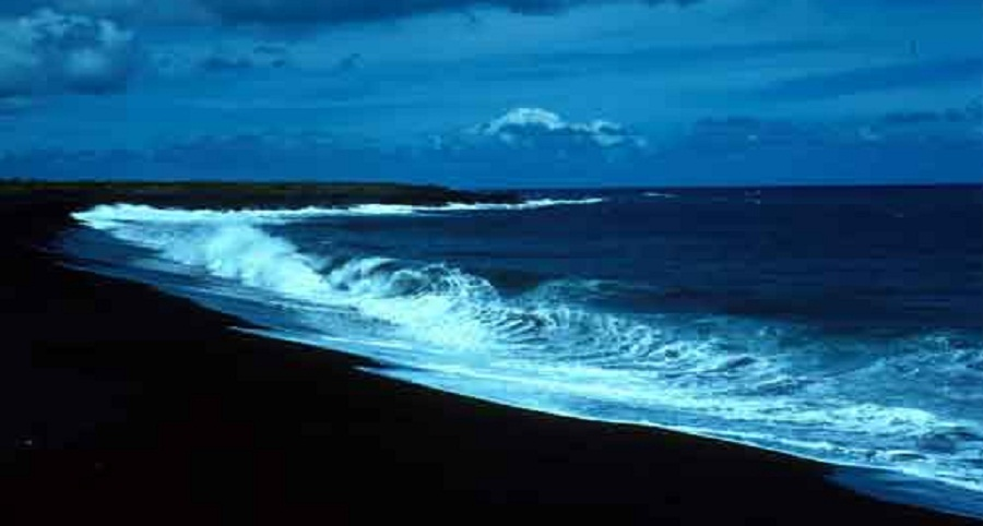 Long Weekend di Pantai Berpasir Hitam Wedi Ireng di Jamin Seru