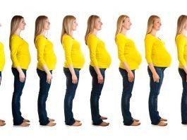 umur kehamilan