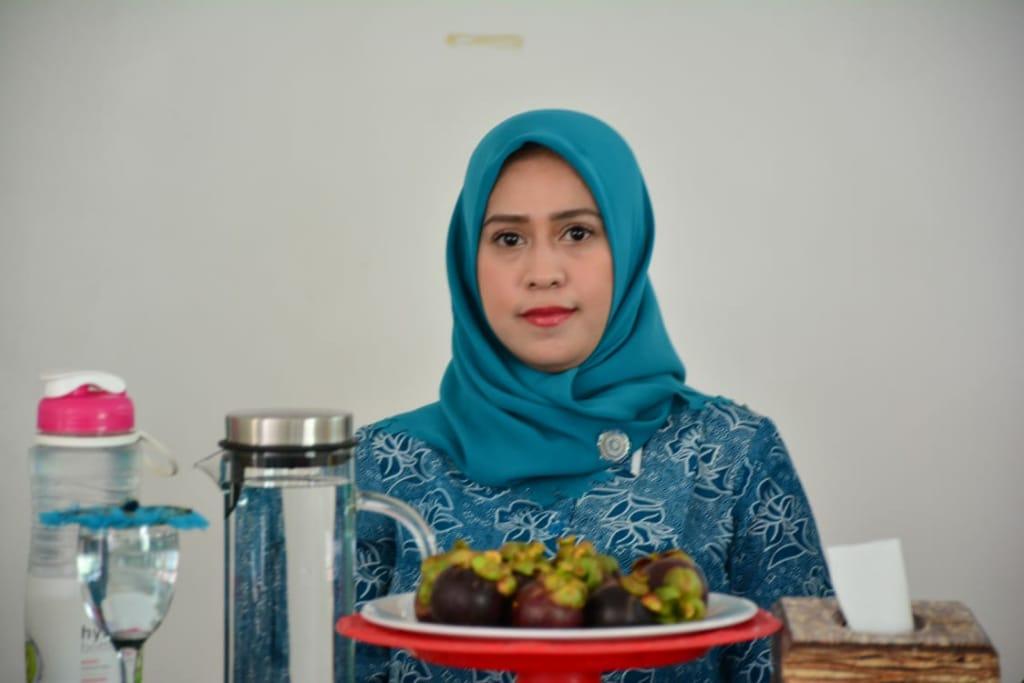 Ketua TP.PKK Kabupaten Sinjai, Hj.Andi Nurhilda Daramata Seto