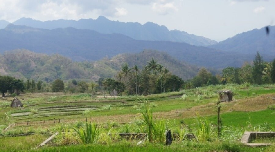 Desa Nunleu